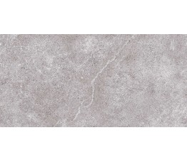 ARLES GRIS 60x120 cm